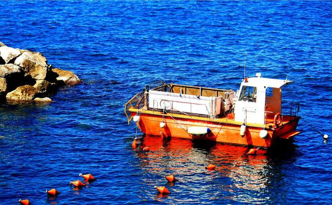 Cinque Terre, Italie 27