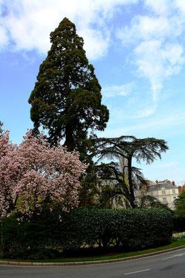Blois, France 40