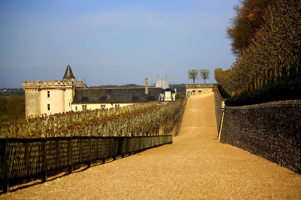 Château de Villandry, La Loire 112