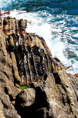 Cinque Terre, Italie 34