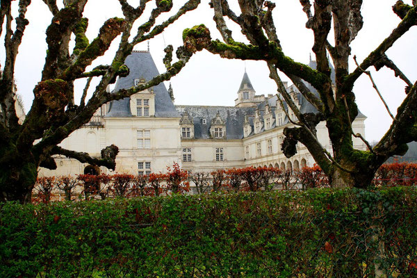 Château de Villandry, La Loire 32