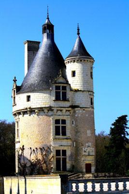 Château de Chenonceau, Le Cher 29