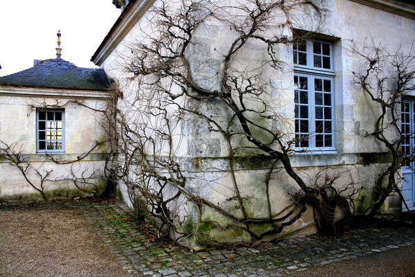 Château Azay-le-Rideau, La Loire 102