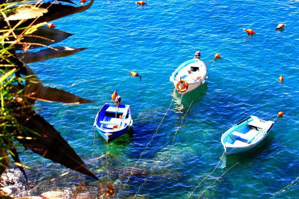 Cinque Terre, Italie 29