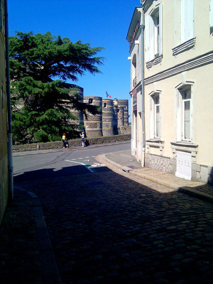 Angers 49