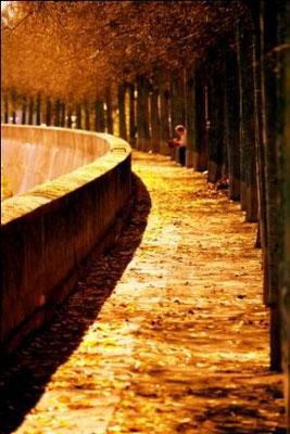 Promenade, berges de la Garonne, Toulouse