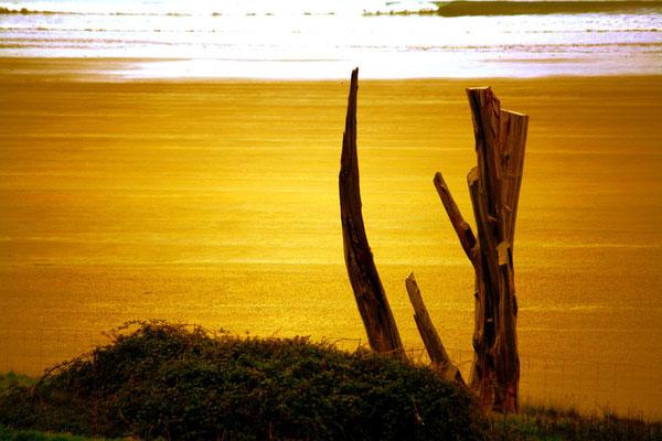 Erquy, Bretagne 9