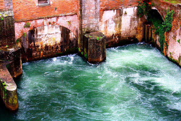 Albi, Toulouse 1