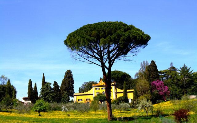 Fiesole, Italie 60