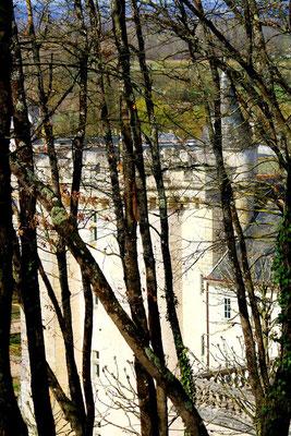 Château de Villandry, La Loire 107