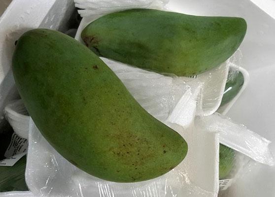 Mango Grün