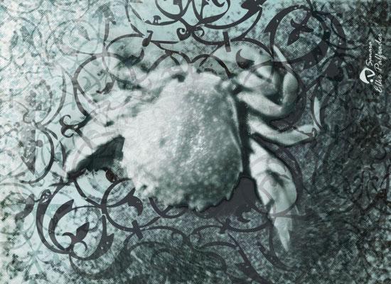 """""""Sternzeichen Krebs, Unikat, 2009, 50x40 cm, verkauft"""