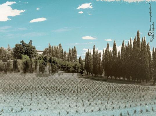 """""""Toscana"""", 100x75cm, Druck auf Aluminium, Leihgabe"""