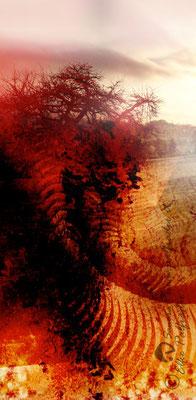 """""""Surreale Wüstenlandschaft"""", 2012"""