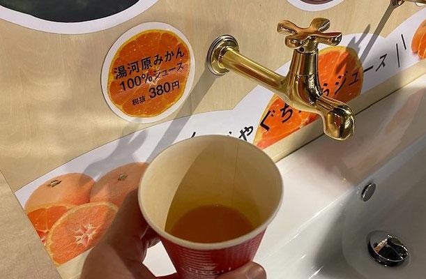 ミナカ小田原 じゃぐちみかんジュース 50代一人旅