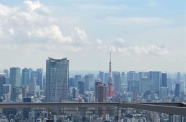 渋谷スカイ 絶景景色 ブログ