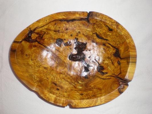 Perückenbaum Schale