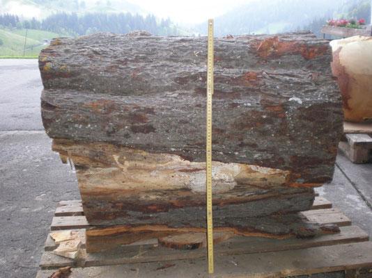 Ein Stück Rosskastanienholz mit knapp 80 cm dm und ca. 350 kg schwer.