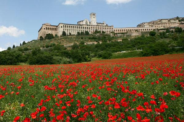 Umbria, Landscape