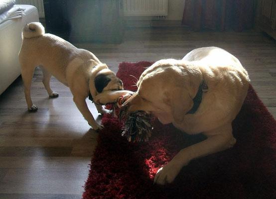 Paul und Leila beim spielen