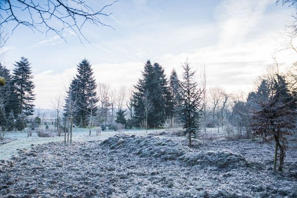Erste Winterruhe