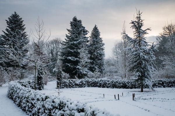 Zweite Winterruhe