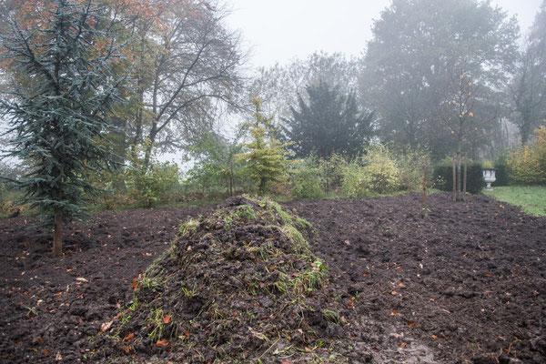Nach Ausräumung des Bodens im Herbst 2017