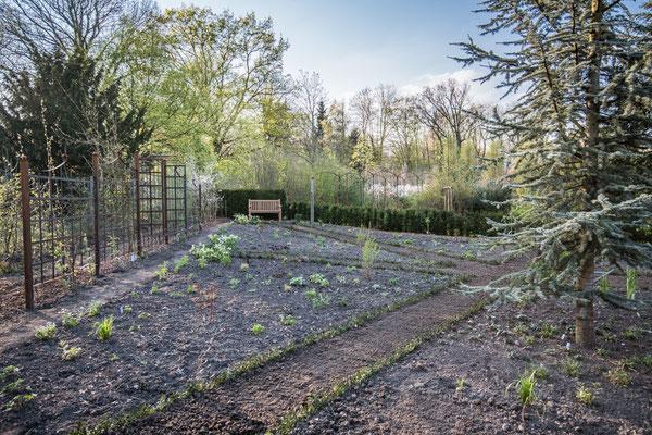 Die Pflanzen sind versenkt und sie Wege für den Rasen vorbereitet.
