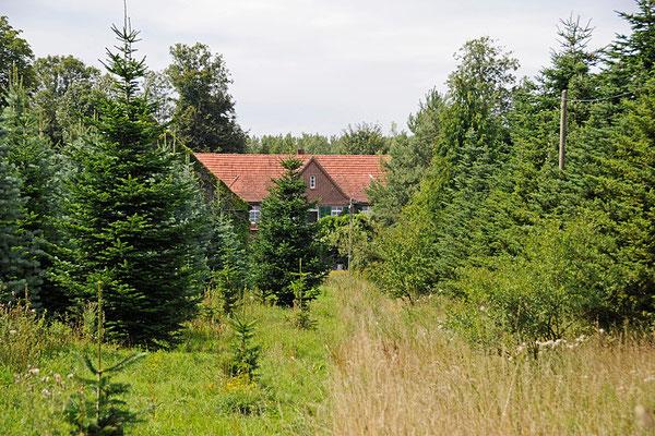 Blick auf das Haupthaus.