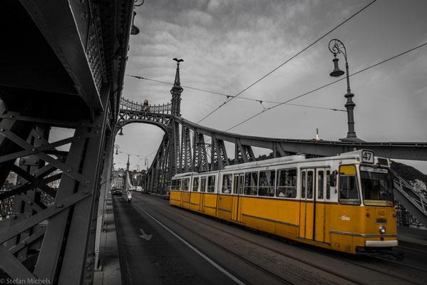 Die 333,6 m lange und 20,1 m breite Brücke überbrückt die Donau und die beiden Uferstraßen.
