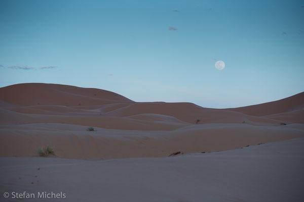 Sahara - Forscher schließen aus der Lage unterschiedlicher Gesteinsschichten, dass sich in dieser Wüste im Laufe von mehreren Jahrmillionen mehrfach trockene und feuchte Phasen abwechselten.