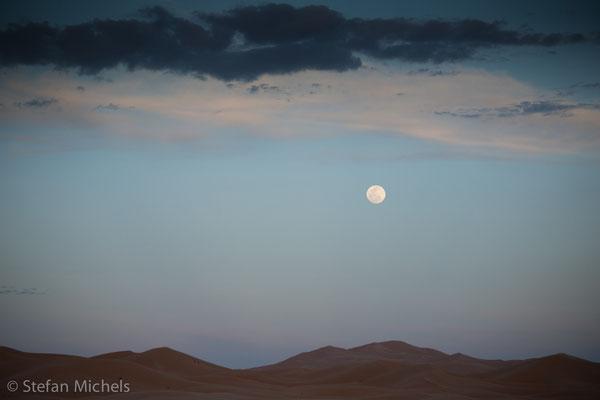 Sahara - Morgenstimmung in der Dünendschaft