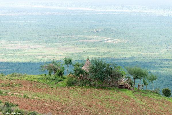 Fahrt durch die ausgedehnte afrikanische Savanne.