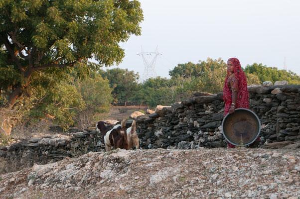 Auf dem Weg nach Udaipur