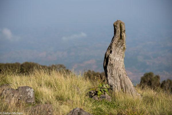 Ostafrikanischer Grabenbruch - Das Rift Valley ist eine Region, in der zahlreiche paläoanthropologische Funde gemacht wurden.