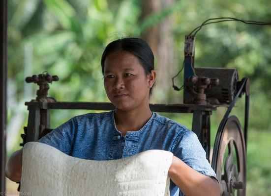 Die fünf wichtigsten Produzentenstaaten von Naturkautschuk sind heute Thailand, Indonesien, Malaysia, Indien und die Volksrepublik China.