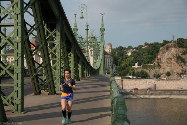 Bei ihrer Fertigstellung erhielt sie zu Ehren von Kaiser Franz Joseph den Namen Franz-Joseph-Brücke.