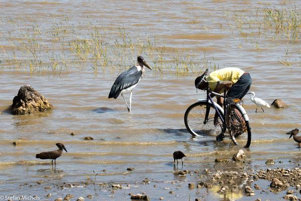 Fahrradwäsche am Ziway-See.