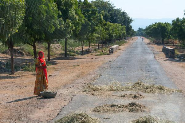 Auf der Landstraße nach Ranakpur