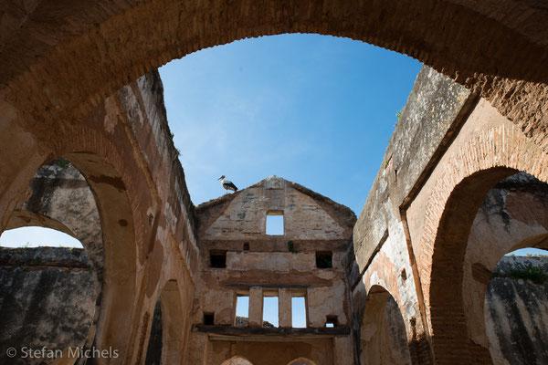 Rabat- Die Chellah - mit Resten der römischen Siedlung Sala Colonia
