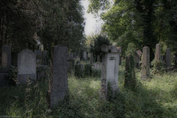 Der jüdische Teil des Friedhofs, verwunschen und wunderschön.