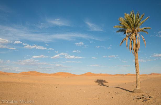 Sahara - Ist größtenteils eine Stein- oder Felswüste (Hammada) beziehungsweise eine Kies- oder Geröllwüste (Serir); die bekanntere Sandwüste (Erg) macht nur etwa 20 Prozent der Fläche aus.