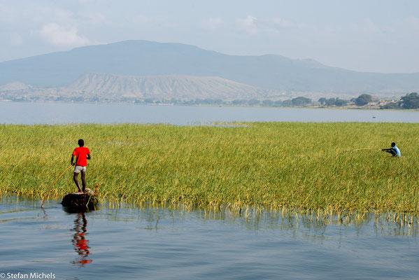 Der Awasasee (amharisch አዋሳ ሐይቅ, Awasa Hayk' ) ist ein See in Äthiopien, gelegen im Rift Valley ca. 200 km südlich von Addis Abeba.