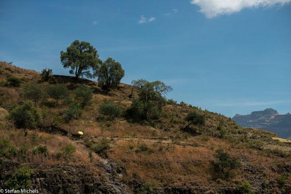 Lalibela -Äthiopien bietet aber auch das Afrika, das wir alle im Kopf haben.