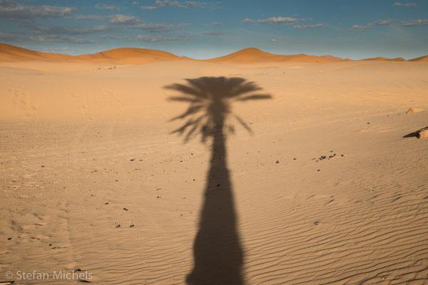 Sahara -Die durchschnittliche Niederschlagsmenge in der Sahara beträgt etwa 45 mm.