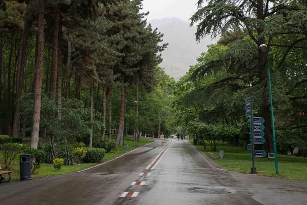 Im kühlen Norden der Stadt auf 1.800 m mit Süd-Blick auf die Stadt und im Norden das Elbrus-Gebirge.