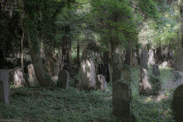 Seit und teils auch schon vor seiner Eröffnung wurde der Zentralfriedhof häufig kritisiert und war bei der Bevölkerung nicht sehr beliebt.