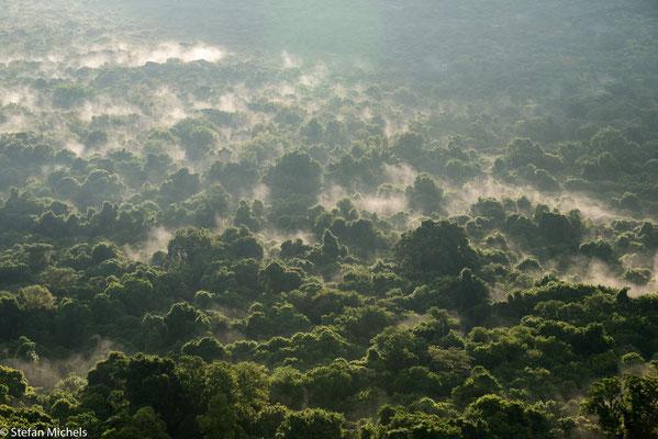 Morgennebel an der Abbruchkante des ostafrikanischen Grabenbruchs.