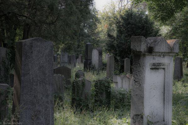 Bereits 1863  war darin sowohl der interkonfessionelle Charakter des Friedhofs festgelegt, als auch die Möglichkeit, einzelnen Glaubensgemeinschaften auf deren Wusch eigene Abteilungen zu überlassen.