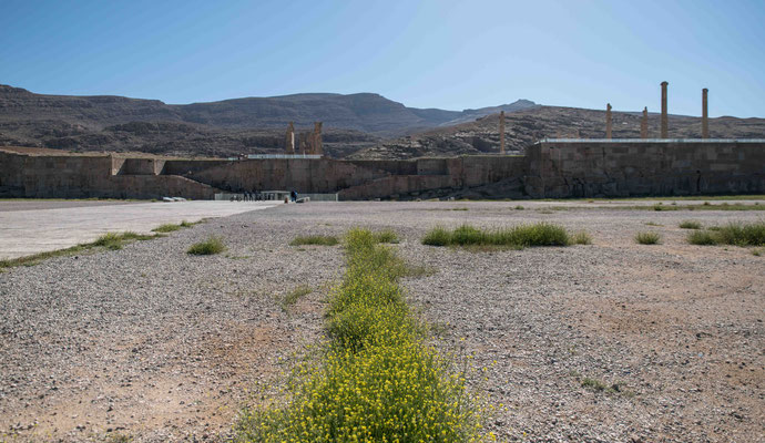 Persepolis war eine der Hauptstädte des antiken Perserreichs unter den Achämeniden und wurde 520 v. Chr. von Dareios I.gegründet.